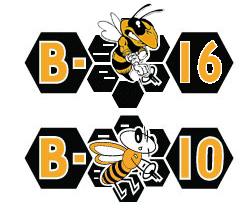 Angry Bee 3.jpg