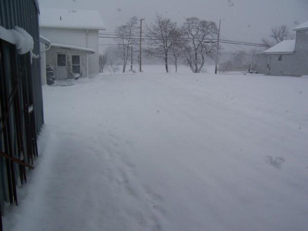 snow1 2 3 13.jpg