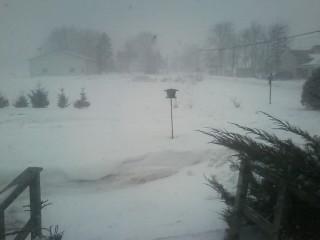 snow 2 5 14 7.jpg