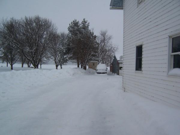 snow 3 2 9 15.jpg