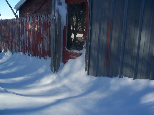 snow 1 26 14 3.jpg