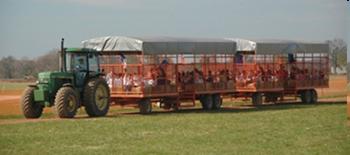 Tractorandtrailers.jpg