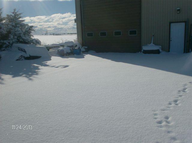snow016.jpg