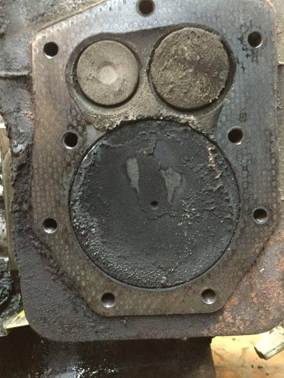 F433C9FA-A9C0-4C82-84F2-4A0546F7EF9C.jpeg
